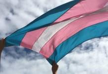 Secretaria de Justiça da Bahia ações de defesa e acolhimento para pessoas trans
